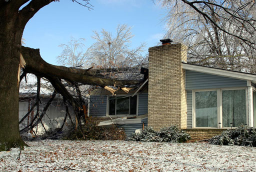 Wind Damage Restoration Services